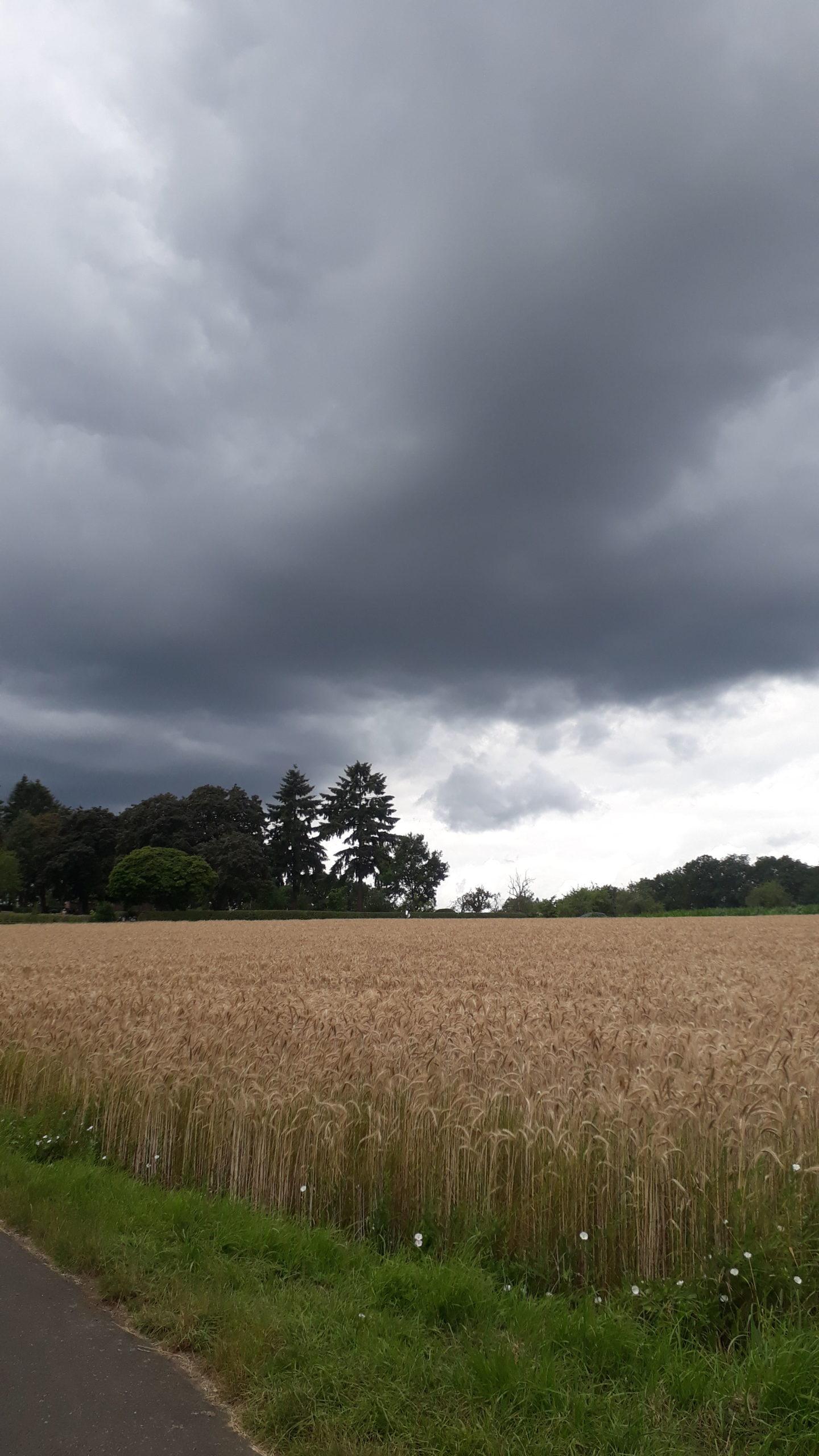 sah bedrohlicher aus als es war: der Himmel auf der letzten Lahnetappe, Foto: Burkard Knöpker